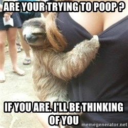 Perverted Sloth - Are your trying to poop ? If you are. I'll be thinking of you