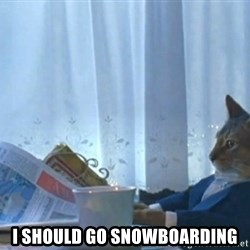 Sophisticated Cat -  I should go snowboarding