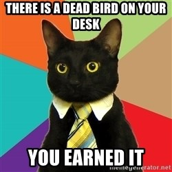 Business Cat - there is a dead bird on your desk you earned it