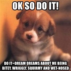cute puppy - ok so DO IT! DO IT=dream dreams about me being bitey, wriggly, squirmy and wet-nosed