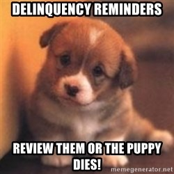 cute puppy - Delinquency Reminders Review them or the Puppy DIES!