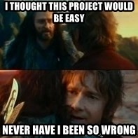 Never Have I Been So Wrong - i thought this project would be easy Never have i been so wrong