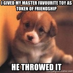 cute puppy - I gived my master favourite toy as token of friendship he throwed it