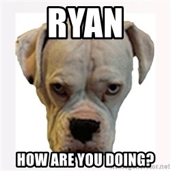 stahp guise - Ryan How are you doing?