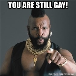 Mr T Fool - You Are Still Gay!