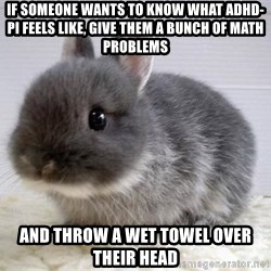 ADHD Bunny - If someone wants to know what ADHD-PI feels like, give them a bunch of math problems And throw a wet towel over their head