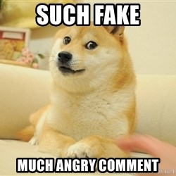 so doge - sUCH FAKE MUCH ANGRY COMMENT