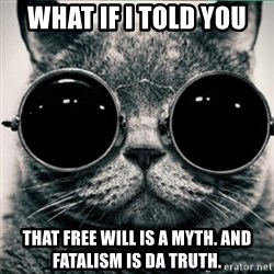 Morpheus Cat - What if i told you that free will is a myth. and fatalism is da truth.