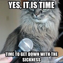yes it is time time to get down with the sickness cat microphone meme generator,Get Down Cat Meme