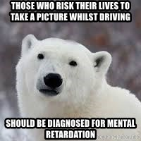Popular Opinion Bear - those who risk their lives to take a picture whilst driving should be diagnosed for mental retardation