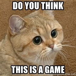 motherfucking game cat - DO you think This is a game