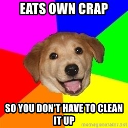 Advice Dog - eats own crap so you don't have to clean it up