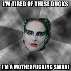 Black Swan Eyes - I'm tired of these ducks I'm a motherfucking swan!