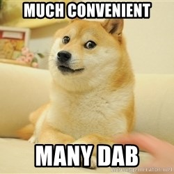 so doge - much convenient many dab
