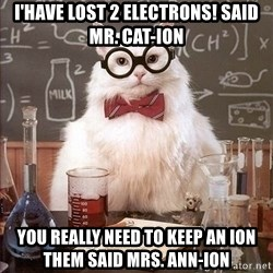 Chemistry Cat - I'have lost 2 electrons! said mr. Cat-ion You really need to keep an ion them said mrs. ann-ion