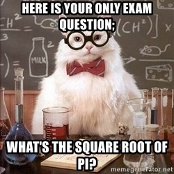 Chemistry Cat - HERE IS YOUR ONLY EXAM QUESTION; WHAT'S THE SQUARE ROOT OF PI?