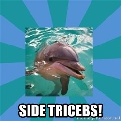 Dyscalculic Dolphin -  Side tricebs!