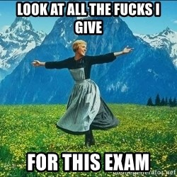 Look at all the things - look at all the fucks i give for this exam