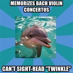 "Dyscalculic Dolphin - Memorizes bach violin concertos can't sight-read ""twinkle"""