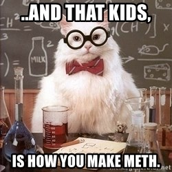 Chemistry Cat - ..and that kids,  is how you make meth.