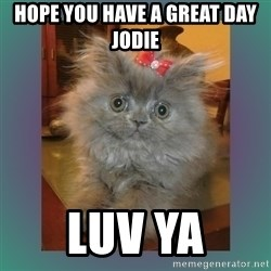 cute cat - Hope you have a GREAT day Jodie Luv ya