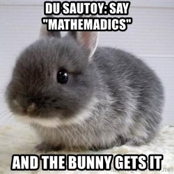 "ADHD Bunny - Du Sautoy: say ""mathemadics"" and the bunny gets it"