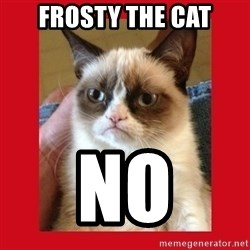 No cat - Frosty the cat no