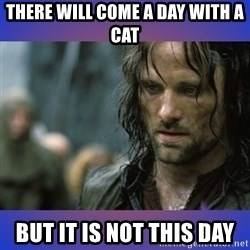 but it is not this day - There will come a day with a cat But it is not this day