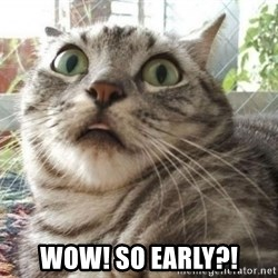 scared cat -  WOW! SO EARLY?!