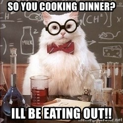 Chemistry Cat - So you cooking dinner? Ill be eating out!!