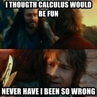 Never Have I Been So Wrong - I thougth calculus would be fun Never have i been so wrong