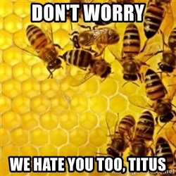 Honeybees - Don't worry we hate you too, titus