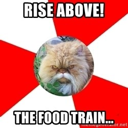 Diabetic Cat - Rise above! The food train...