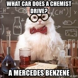 Chemistry Cat - What car does a chemist drive? a Mercedes benzene