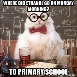 Chemistry Cat - where did ethanol go on monday morning? to primary school