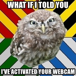 JEALOUS POTTEROMAN - WHAT IF I TOLD YOU I'VE ACTIVATED YOUR WEBCAM