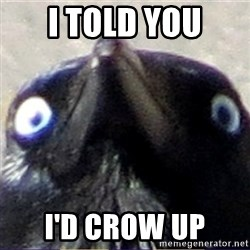 insanity crow - I told you I'd Crow up