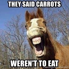Horse - they said carrots weren't to eat