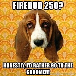 SAD DOG - firedud 250? honestly, i'd rather go to the groomer!
