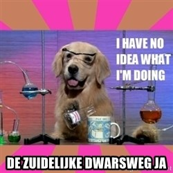 I have no idea what I'm doing dog -  De zuidelijke dwarsweg ja