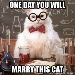 Chemistry Cat - one day you will marry this cat