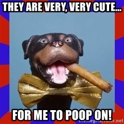 Triumph the Insult Comic Dog - They are very, very cute... For me to poop on!