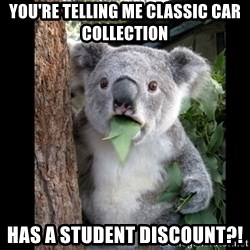 Koala can't believe it - You're telling me Classic Car Collection  has a student discount?!