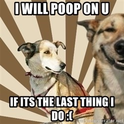 Stoner dogs concerned friend - i will poop on u if its the last thing i do :(