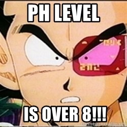 Vegeta's whore detector - PH level  IS OVER 8!!!