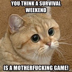 motherfucking game cat - You think a survival weekend is a motherfucking game!