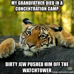 Confession Tiger - My grandFATHER DIED IN A CONCENTRATION CAMP dIRTY JEW PUSHED HIM OFF THE WATCHTOWER