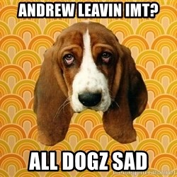SAD DOG - Andrew leavin IMT? All dogz sad