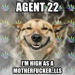 Stoner Dog - Agent 22 I'm high as a motherfucker..lls