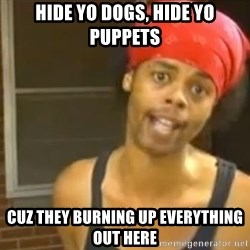 Antoine Dodson - HIDE YO DOGS, HIDE YO PUPPETS CUZ THEY BURNING UP EVERYTHING OUT HERE